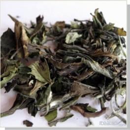 Thé blanc Paï Mu Tan biologique